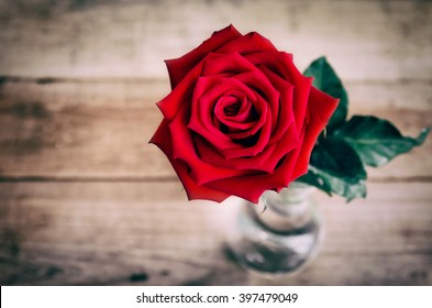 Royalty Free Single Red Rose Wallpaper Images Stock Photos