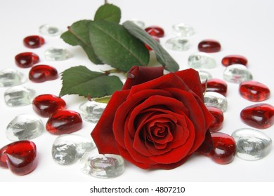 Red rose with red and white hearts