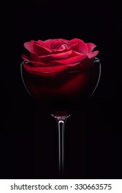 Red rose in wineglass, close up isolated on black studio shot