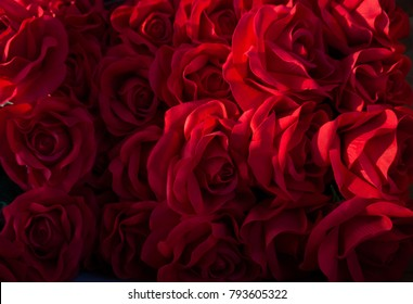 red roses background, valentine day concept