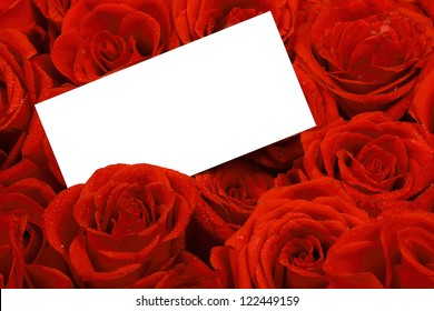 Red roses with a blank gift tag.
