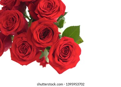 red roses card flower background valentine romance greeting florist