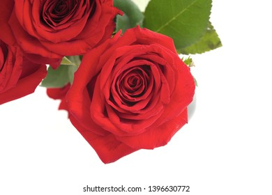 red roses card flower background love romance greeting florist