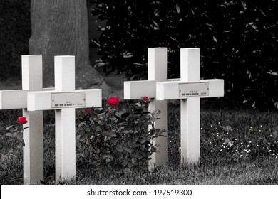 Red roses and cross on cemetery world war one