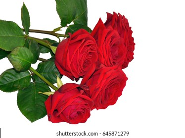Red roses flowers bunch bouquet isolated on white, wedding beauty card background decoration