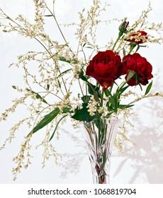 Red roses in glass vase