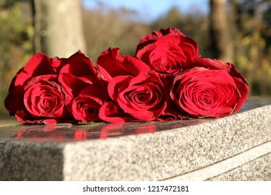 Red roses left on gravestone at cemetery memorial
