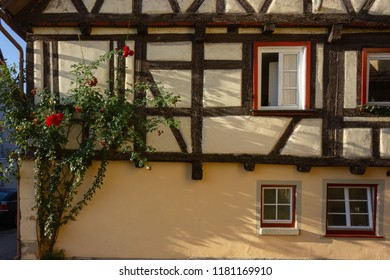 red roses on framework facade  on a sunny summer morning in south germany city schwaebeisch gmuend
