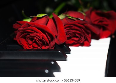 red roses on piano