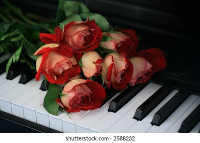 Red roses  on piano keyboard