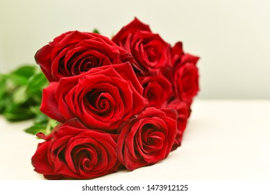 Red roses on a table on a white background.