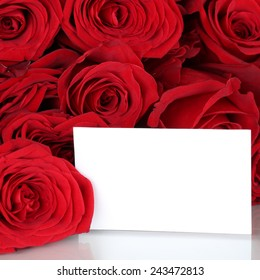 Red roses on Valentine's or mothers day with copyspace for your own text