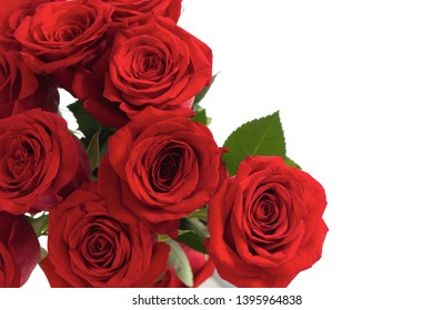 red roses on white background anniversary card