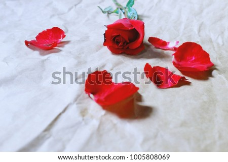 4904c1465cd884 Red Roses Petals On Brown Crumpled Stock Photo (Edit Now) 1005808069 ...