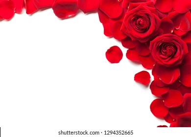 Red roses and rose petals isolated white background