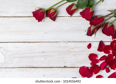 Red roses/petals on old white wood table/Valentines day background