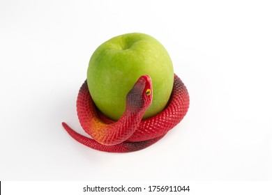 red rubber snake around green apple