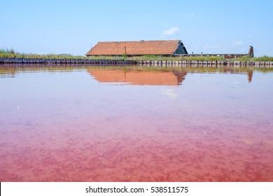 Red salty lake 5