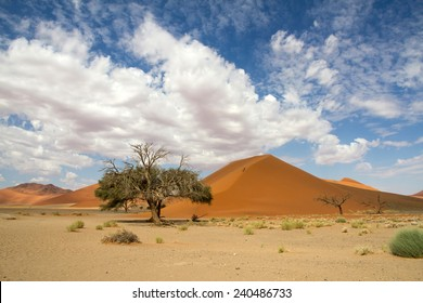 The red sand dune 45 of Sossusvlei, Namibia