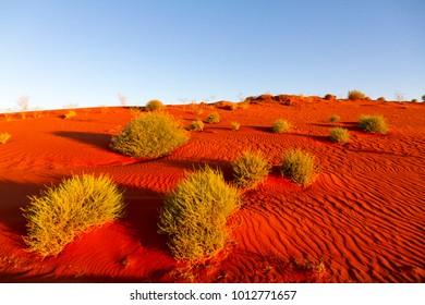Red sand dune, Pilbara, Western Australia