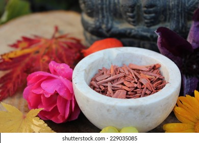 Red Sandalwood chips cut (santali rubri from Gabun) in a stone bowl ritual offering to the indian elephant god ganesha with different fall / autumn flowers and leaves (rose, calendula, etc)
