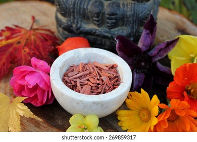 Red Sandalwood chips cut (santali rubri from Gabun) in a stone bowl ritual offering to the indian elephant god ganesha with different fall / autumn flowers and leaves (rose, calendula) vivid colors