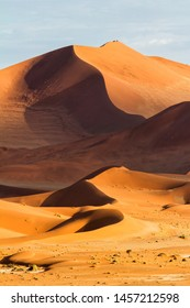 Red sanddunes of the Sossusvlei area in the Namib-Naukluft National Pak in Namibia