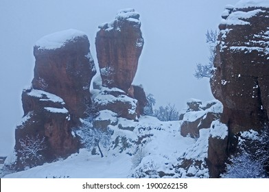 Red sandstone Belogradchik rocks in Bulgaria under conditions of poor foggy visibility in blizzard