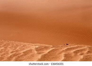 Red sandy dunes