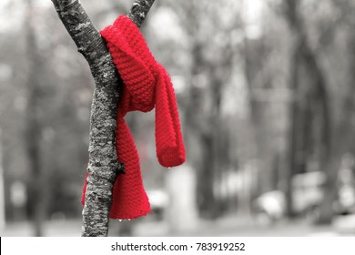 A red scarf left in a tree. It is common practice to leave mittens and scarves in trees for those that need them. Only the scarf is in color, the rest is black and white.