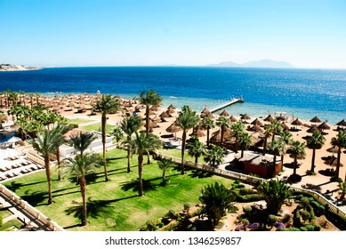 Red Sea coast, resort beach with palm trees in Sharm El Sheikh, Egypt.