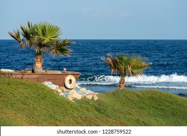 Red Sea near Marsa Alam, Egypt, Africa. The coast with the waves crashing on the coral reef with two palm trees and green lawn