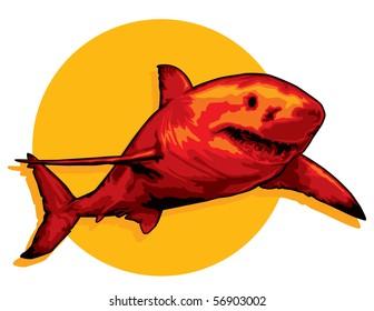 Red Shark illustration