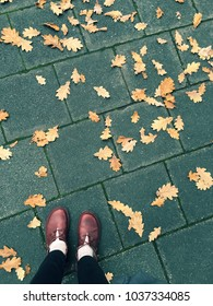 Red shoes on the Paved Sidewalk in Autumn Among the Fallen Yellow Leaves from Above.