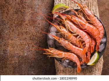Red shrimps gourmet wild ocean jumbo shrimps copy space.