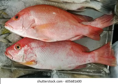 how to cook white snapper fillets