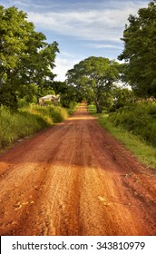 Red soil road. Landscape of Parana Misiones Province of Argentina. countryside.  Rural Landscape.
