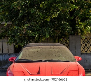Red sport car front view
