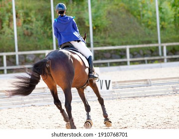 A red sports horse with a rider riding with his foot in a boot. Equestrian sport.