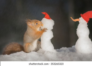 red squirrel holding  a snowman
