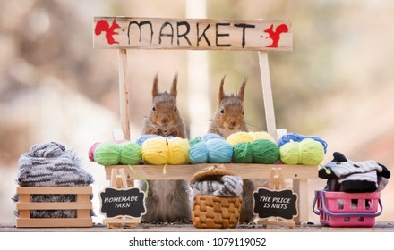 red squirrels with an market stand with yarn