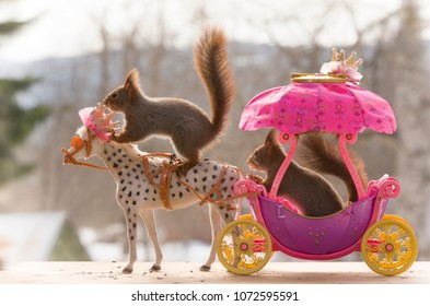 red squirrels sit on an royal horse and chariot