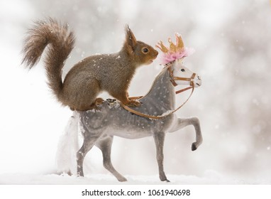 Red squirrels is standing on an royal horse