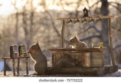 red squirrels are standing with a Slot Machine and a bar
