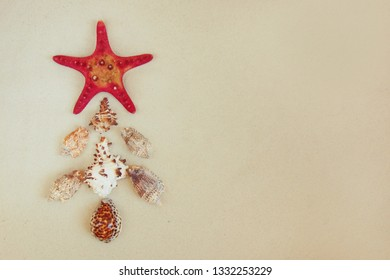 Red starfish and mollusk shells like christmas tree on pure white fine beach sand. Holiday concept. Sea relax background with place for text, copy space. Top view