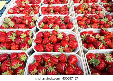 Red strawberries in cardboard punnets on a market