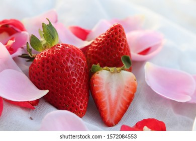 Red strawberry Pink rose petals Red placed in the fabric and has a white background