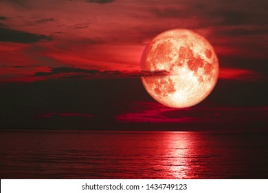 red sturgeon moon back on silhouette cloud on the sunset sky, Elements of this image furnished by NASA