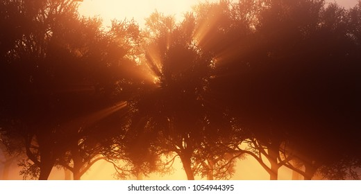red sunlight comes through trees with beams 3d rendering