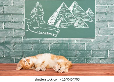 Red sunny cat, the sacred animal of the ancient Egyptians lazily lying under the image of the Egyptian Sphinx and pyramids